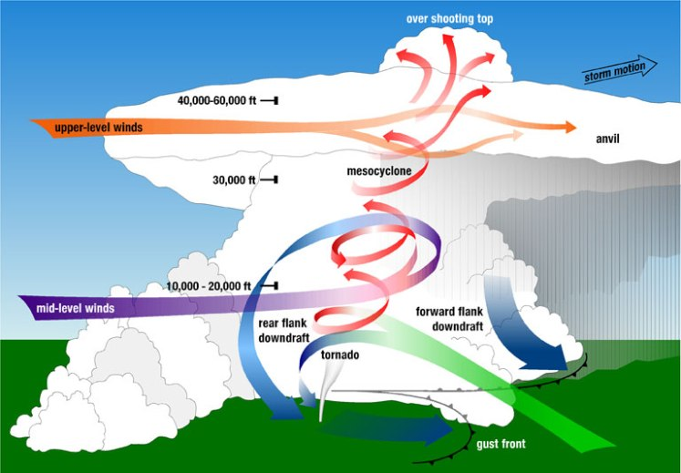 Diagram of a supercell thunderstorm, the kind that form tornadoes. Credit: Wikimedia Commons