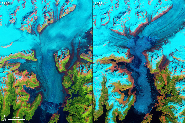 The Columbia Glacier in Southeast Alaska is a tidewater glacier that retreated 12 miles in the last 25 years, accounting for 1% of the global sea-level rise budget all on its own. (Credit: NASA/USGS)