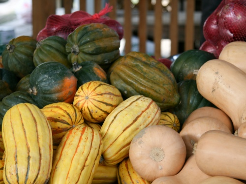 Early season squash like acorns (green) and delicatas (yellow) are best to eat soon after harvest while butternuts (orange) improve with age. (Credit:  Tim Sackton via Flickr)
