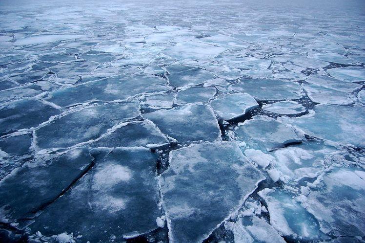 800px-arctic_ice_2