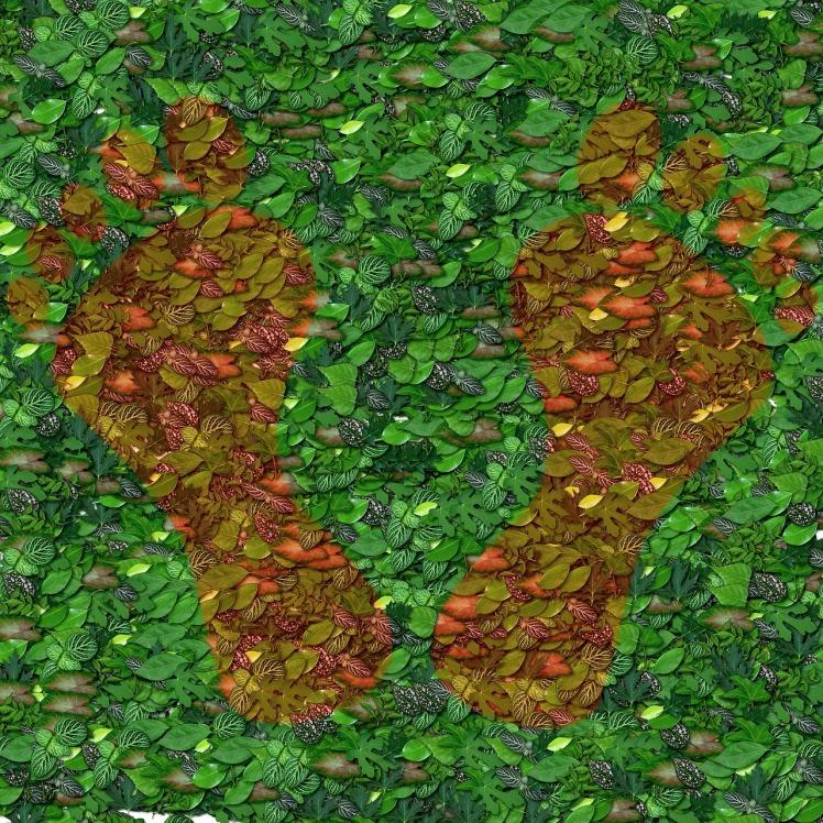 foliage-1443090_1280